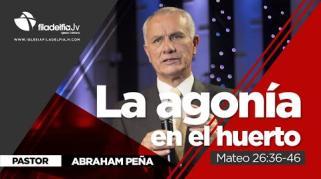 Embedded thumbnail for La agonía en el huerto - Abraham Peña - La revelación de Jesucristo